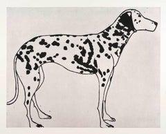 Black and White Dalmatian, Kate Boxer, Animal Art, Dog Print, Drypoint Print