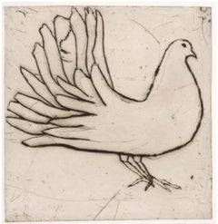 Fantail Dove, drypoint on paper, Kate Boxer