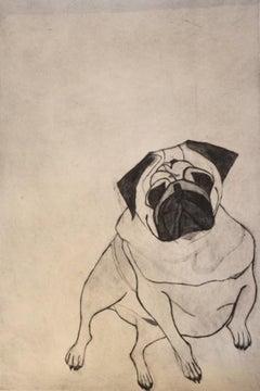 Kate Boxer, Fred, Contemporary Art, Art Online, Animal Art, Pug Art