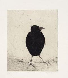 Kate Boxer, Jackdaw, Limited edition animal print