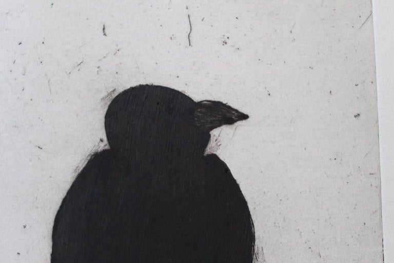 Kate Boxer, Jackdaw, Limited Edition Drypoint Print, Animal Art For Sale 5