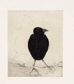Kate Boxer, Jackdaw, Limited Edition Drypoint Print, Animal Art