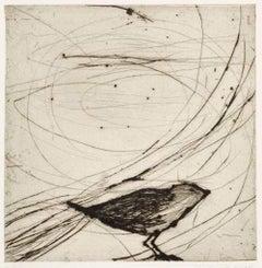 Small Black Bird, Kate Boxer,