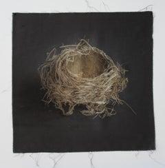 Nest 13