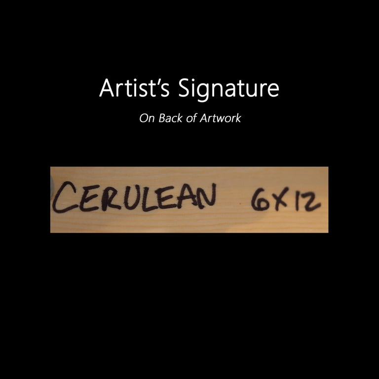 Cerulean For Sale 5