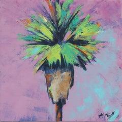 Lilac Sizzle Palm