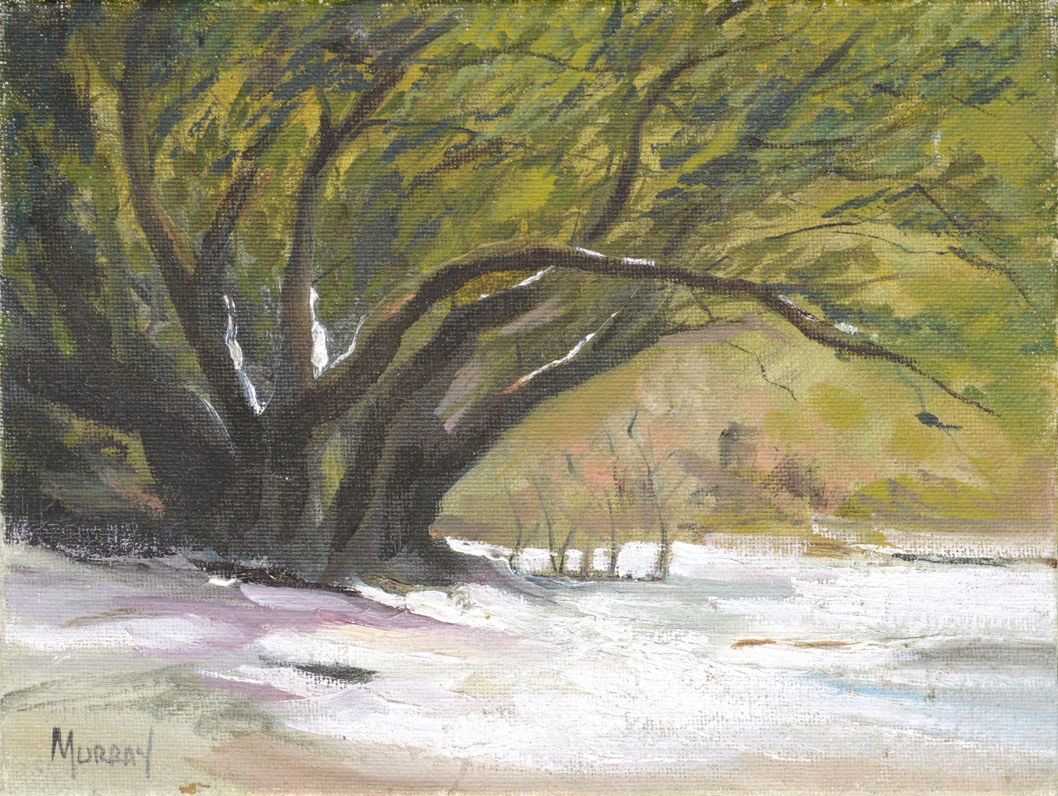 """Snow + Trees"" Landscape"