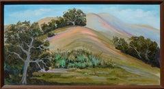 Rolling Big Sur Hills Landscape