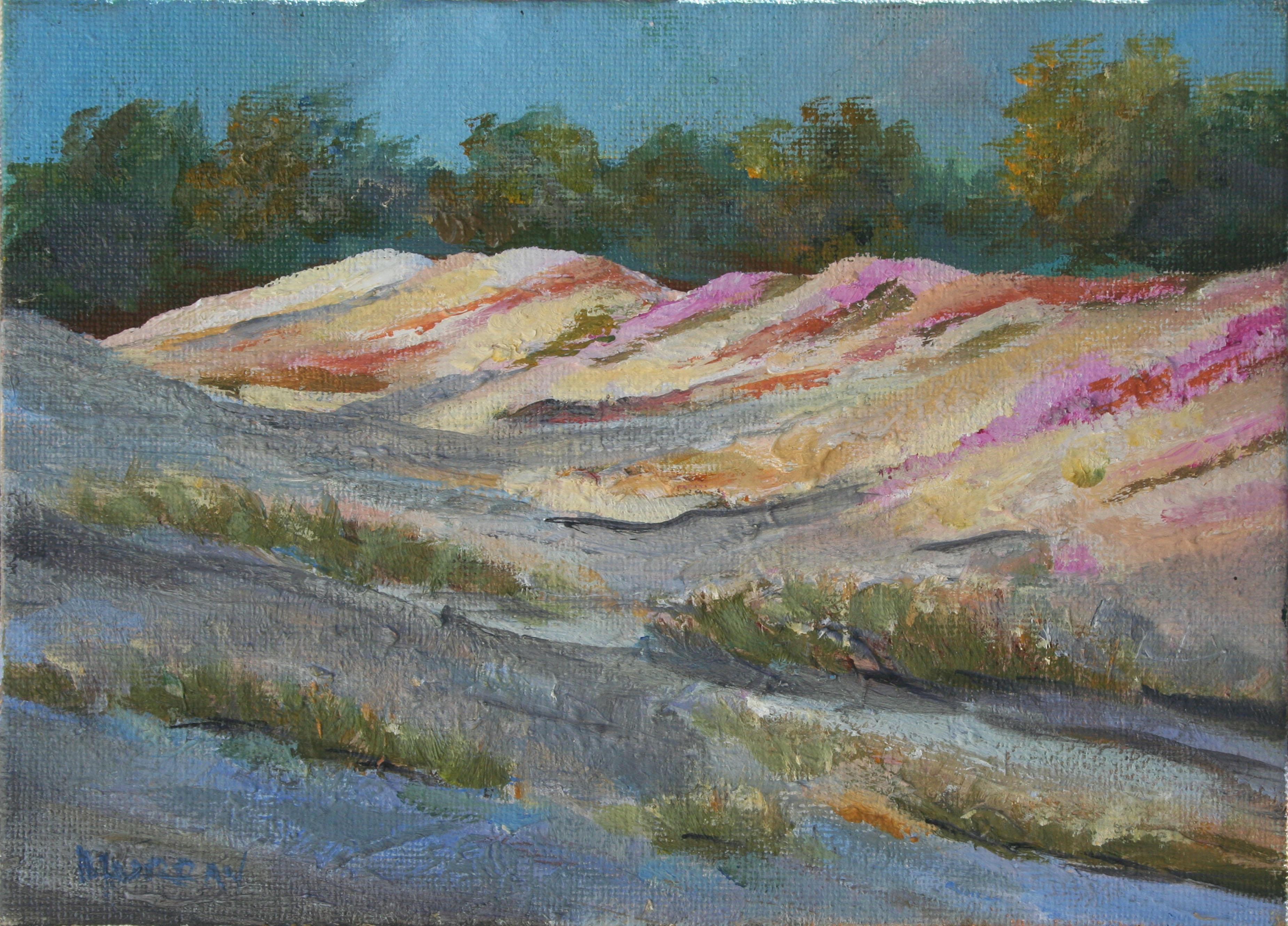 Sand Dunes and Ice Plants - Monterey Landscape