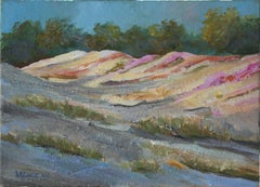 Sand Dunes and Ice Plants - Monterey Landscape