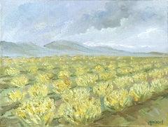 Santa Barbara Vineyards Mustard Flowers in Bloom by Kathleen Murray