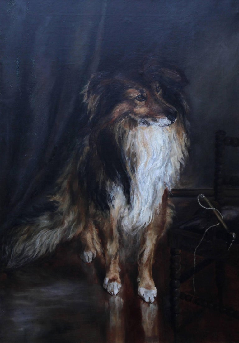 Portrait of a Collie - British Victorian realist dog oil painting female artist For Sale 1
