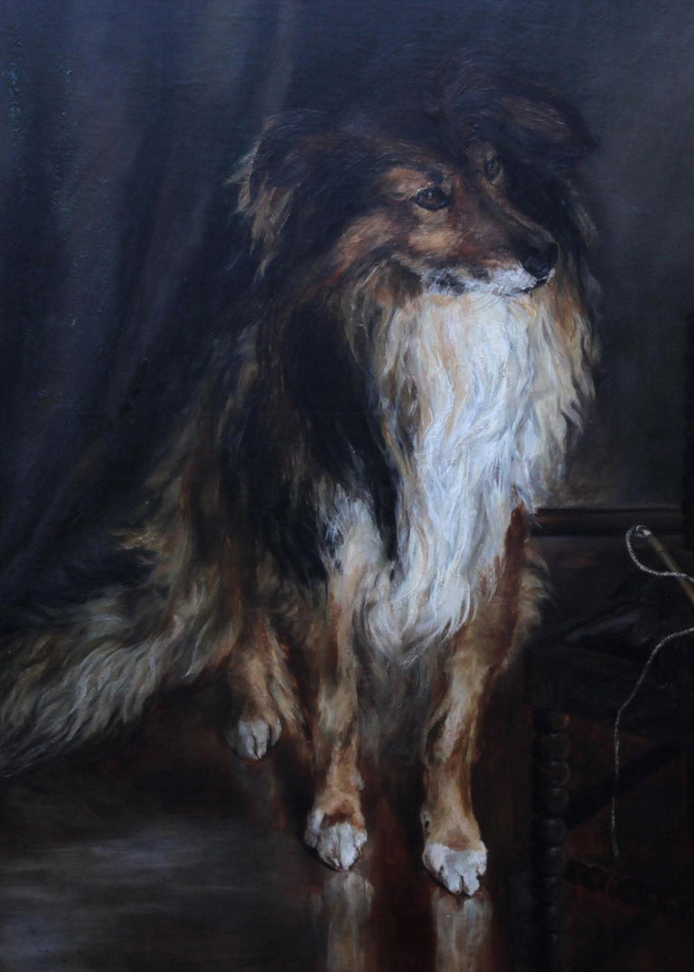 Portrait of a Collie - British Victorian realist dog oil painting female artist For Sale 2