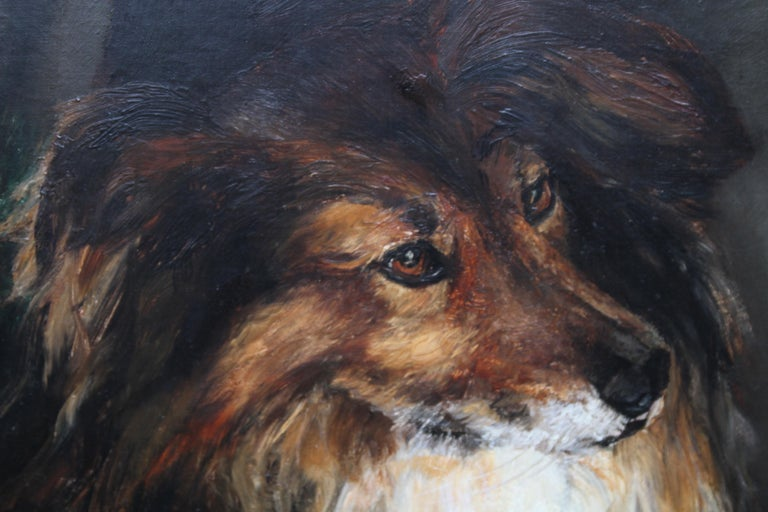 Portrait of a Collie - British Victorian realist dog oil painting female artist For Sale 5