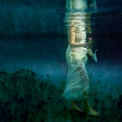 The Gift - underwater photography, metallic photo paper contemporary mounted