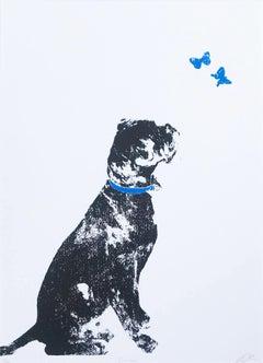 Katie Edwards, Curious, Dog Art, Affordable Art, Art Online, Limited Edition Art