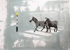 Zebra Crossing II, Katie Edwards, Limited Edition Print, Affordable Animal Art,