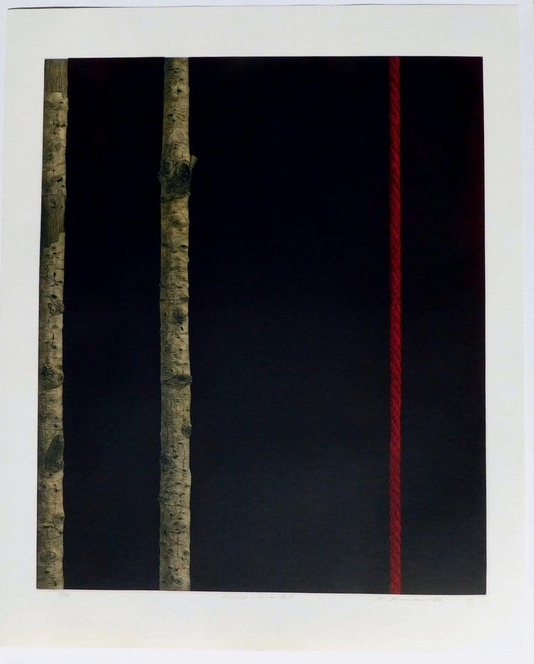 Late 20th Century Katsunori Hamanishi Japanese Mezzotint Print, 1989,