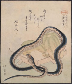Snake and Goueds - Original Woodblock Print by Katsushika Hokusai - 19th Century