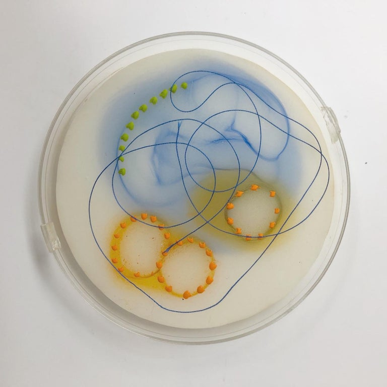 "Kay Hartung's ""Cell Samples Grouping 1"" is a collection of seven 4 and 6 inch petri dishes filled with encaustic medium and delicately painted with pastel. In varying colors some pieces may contain thread or glass balls which complement the cellular"