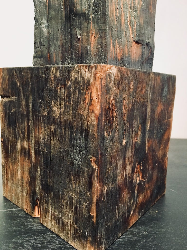 Abstract wood Sculpture: 'Plant' For Sale 6