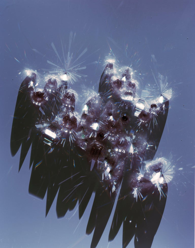 Untitled (from the series Remains), Kelly Reilly, Diamonds, Contemporary - Print by Kelly Reilly