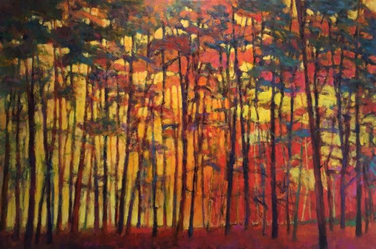 Brightly Lit Woods
