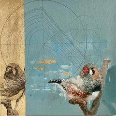 Zebra Finch - contemporary collaborative decorative bird mixed media painting