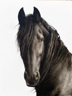 """""""Untitled"""" photorealist black and white oil painting portrait of a dark horse"""