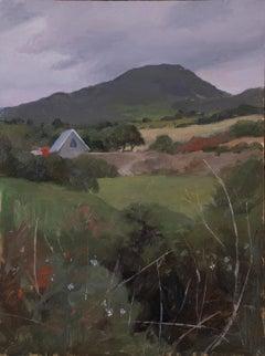 West Cork Landscape (Ahakista)