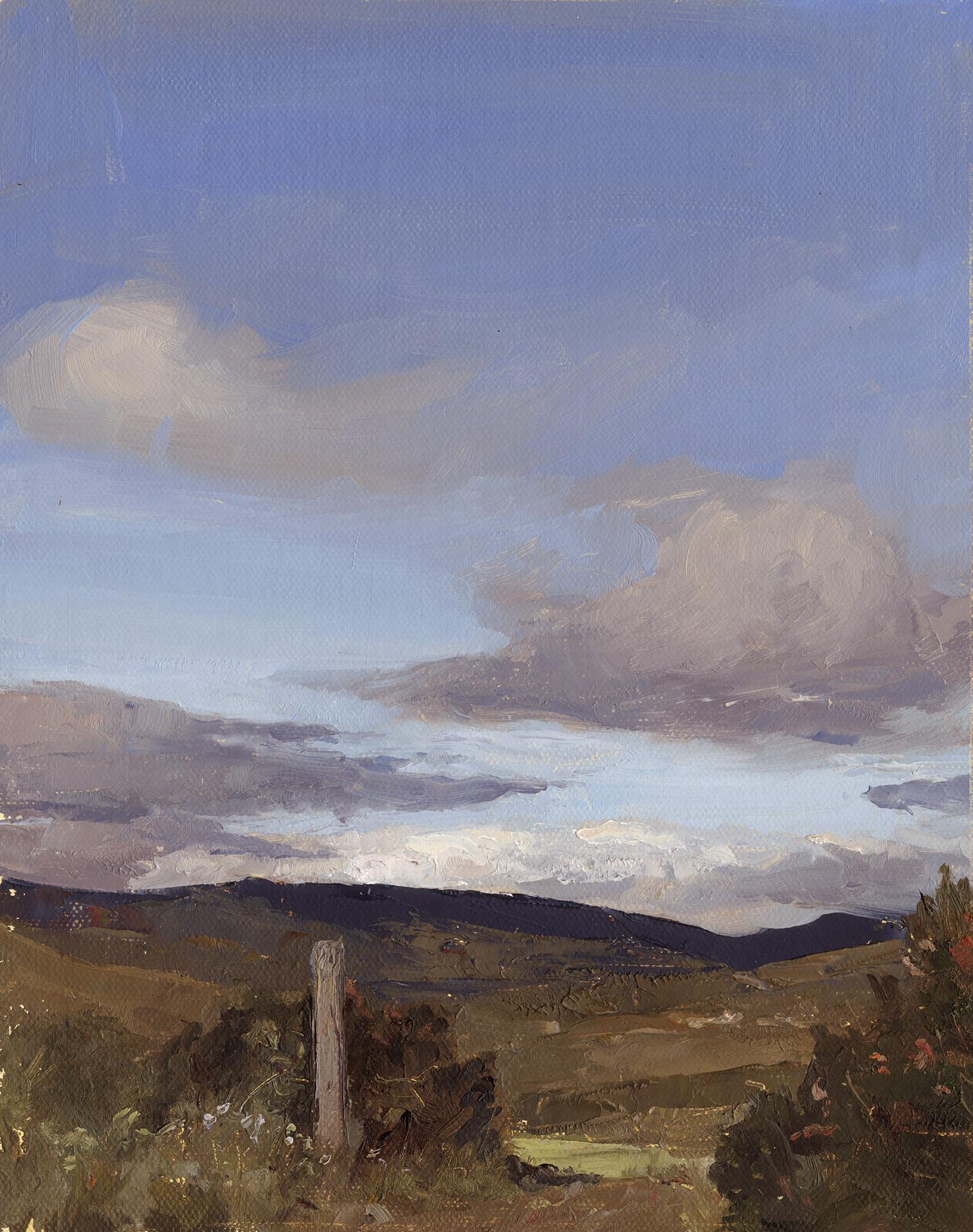 West Cork Landscape ( Kealkil)
