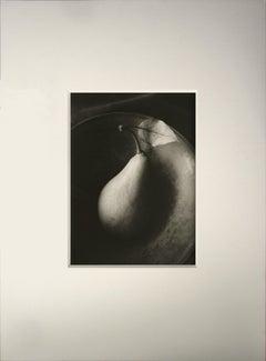 Still Life #158, Platinum Palladium Print, 1994