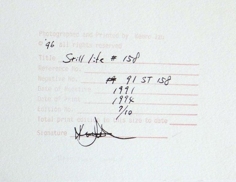 Still Life #108 and Still life #158 For Sale 3