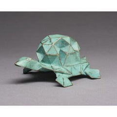 Star Tortoise 3D AP