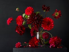 Dahlias #1,  Botanical photographic print, Old Masters Style, 21st century