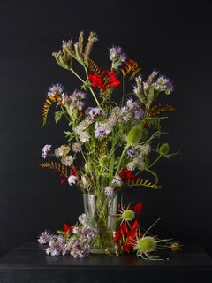 Mixed Summer Plants #3,  Botanical photographic print,  Old Masters Style