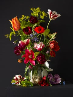 Mixed Tulips #2,  Botanical photographic print,  Old Masters Style