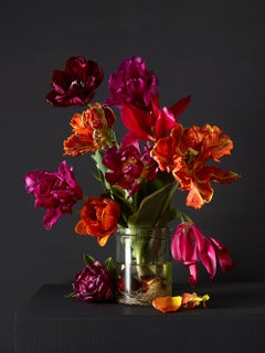 Mixed Tulips #4,  Botanical photographic print,  Old Masters Style