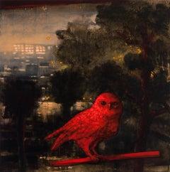 The Hidden Bird