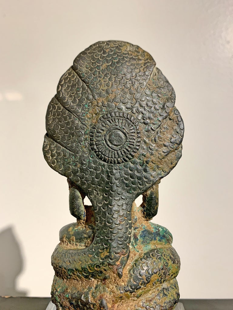 Khmer Bronze Buddha with Naga, Angkor Period, Style of the Bayon, 14th Century For Sale 10