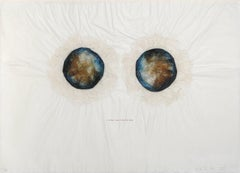 Europa, I am the Flesh of the Full Moon, Collage Multiple by Kiki Smith