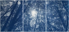 Blue Tones Forest Triptych, Looking Up Through The Trees, Limited Edition Cyano