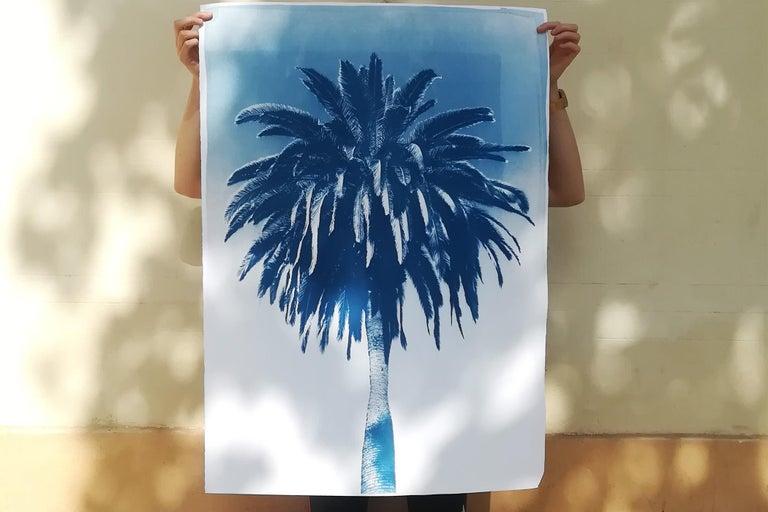 Botanical Triptych of Shady Majesty Palm Leaves Garden, Blue Tones Cyanotype  For Sale 10