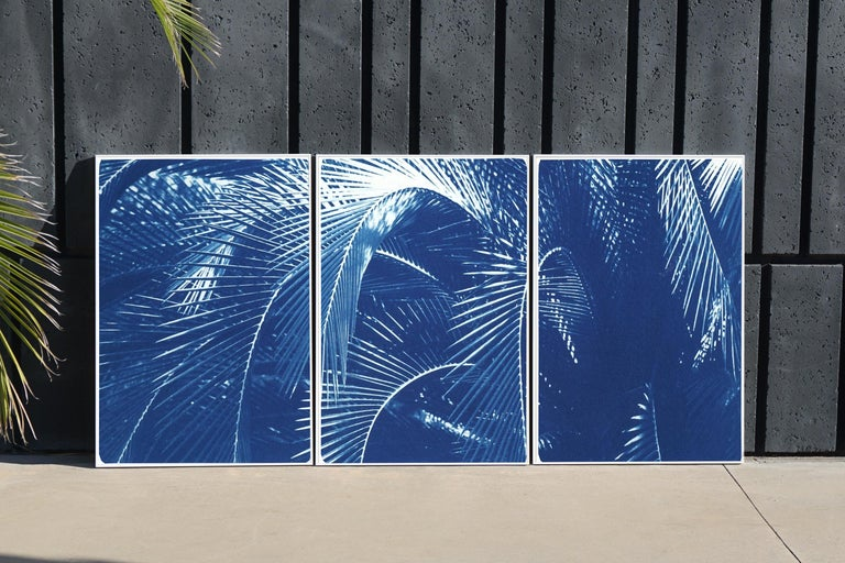 Botanical Triptych of Shady Majesty Palm Leaves Garden, Blue Tones Cyanotype  - Print by Kind of Cyan