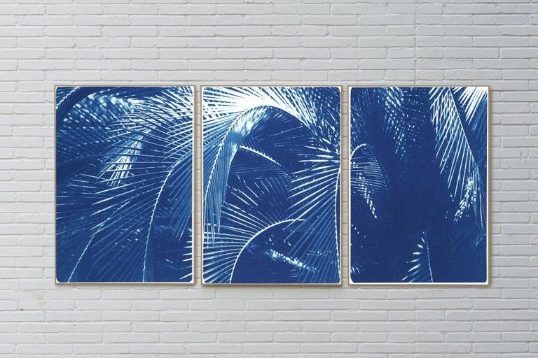 Botanical Triptych of Shady Majesty Palm Leaves Garden, Blue Tones Cyanotype  For Sale 2