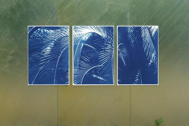 Botanical Triptych of Shady Majesty Palm Leaves Garden, Blue Tones Cyanotype  For Sale 4