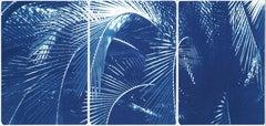 Botanical Triptych of Shady Majesty Palm Leaves Garden, Blue Tones Cyanotype
