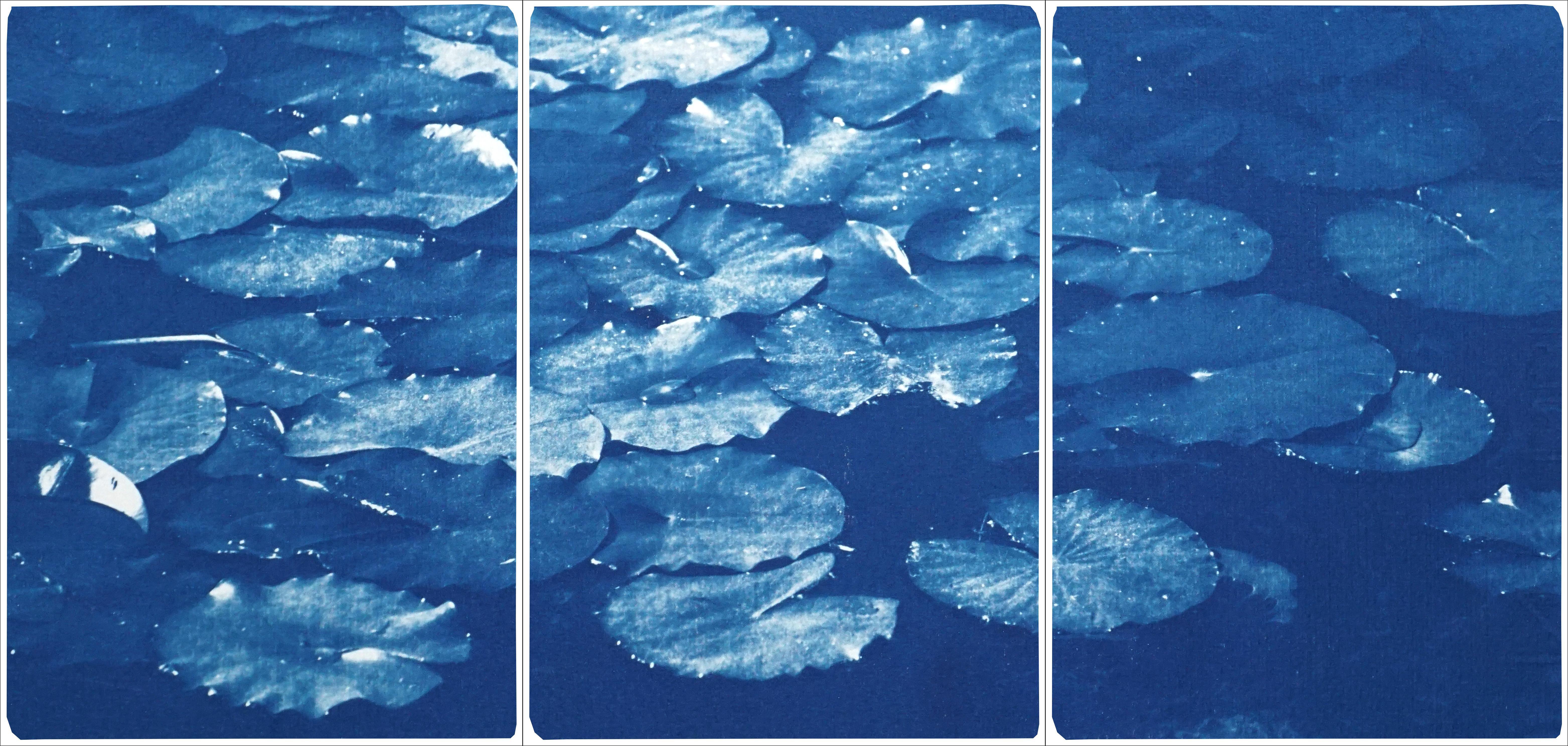 Lilypad Pond Triptych, Large Cyanotype on Watercolor Paper, Zen Blue Landscape