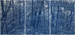 Walking in the Woods, Forest Landscape Cyanotype Print, Limited Edition, Blue