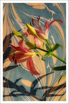 Pink Lilies on Marble Swirls, Contemporary Still Life Giclée Print, Soft Light